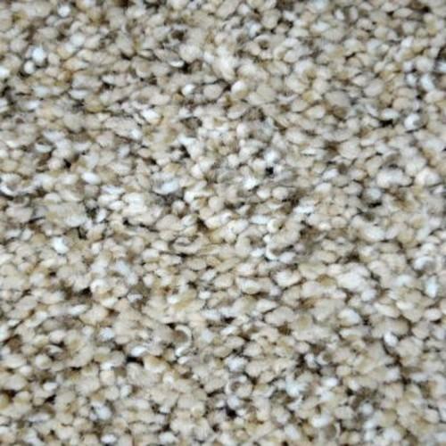 LifeProof Graceful Style I - Color Crestwood Texture 12 ft. Carpet