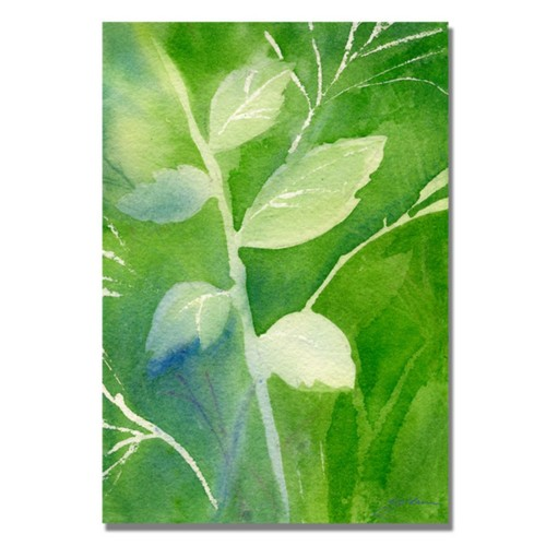 Trademark Fine Art 'Greenery' 22