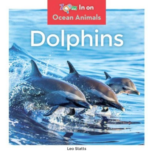 Dolphins (Library) (Leo Statts)