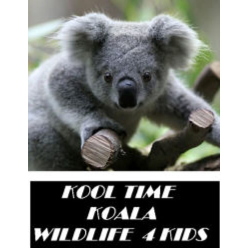 Wildlife: Kool Time Koala Wildlife 4 Kids ( spiders , tarantula , sea, creature, sea world, underwater world, horse, wild, forest, beast, animals, elephant, photo, fish, wildlife, ocean, shark, octopus )
