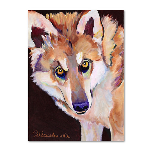 Trademark Global Pat Saunders-White 'Night Eyes' Canvas Art [Overall Dimensions : 14x19]