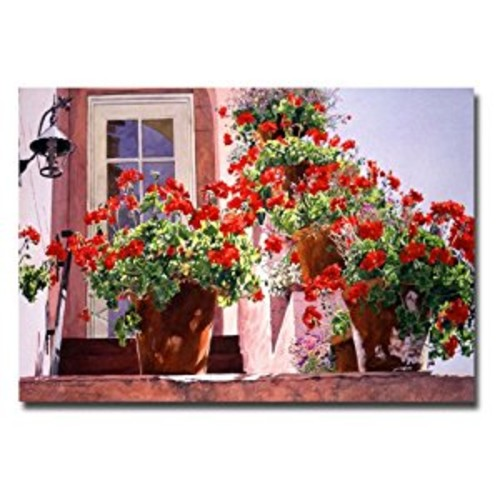 Geraniums on the Stairs by David Lloyd Glover, 16x24-Inch Canvas Wall Art: Prints: Posters & Prints [16 by 24-Inch]
