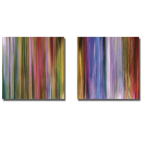 John Butler 'Spectra Falls I and II' 2-piece Canvas Art Set [option : Stretched 12 x 12]