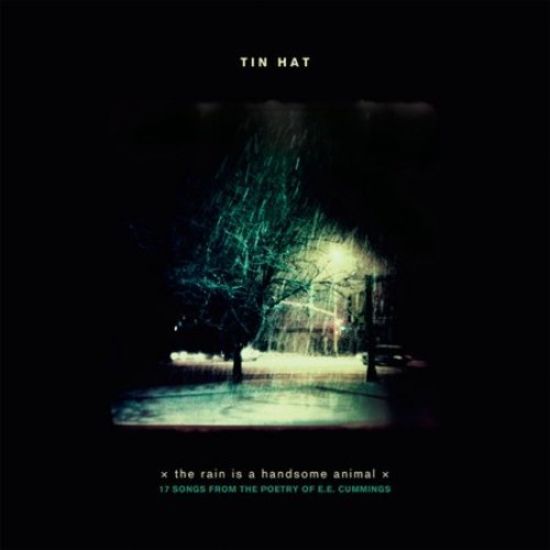 The Rain Is a Handsome Animal [CD]