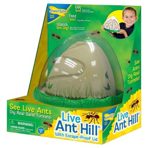 Insect Lore Ant Hill