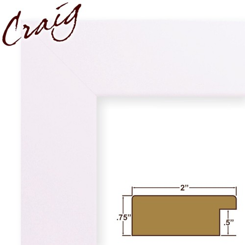 Craig Frames Inc 19x21 Custom 2
