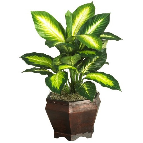 Nearly Natural 20 in. Golden Dieffenbachia Silk Plant with Wood Vase