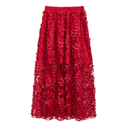 Tulle Skirt with Embroidery