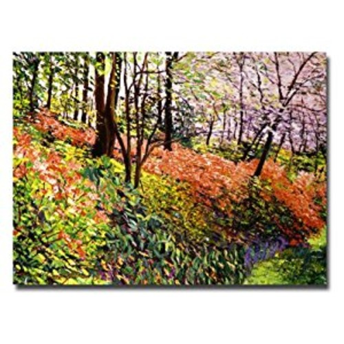 Magic Flower Forest by David Lloyd Glover, 18x24-Inch Canvas Wall Art [18 by 24-Inch]