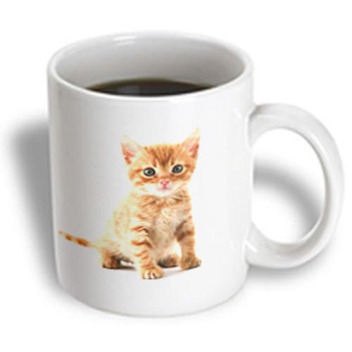 3dRose - Florene Cat - Cute Orange Tabby Kitten - 11 oz mug