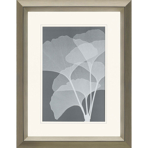 Gingkos I by Steven Meyers Framed Graphic Art