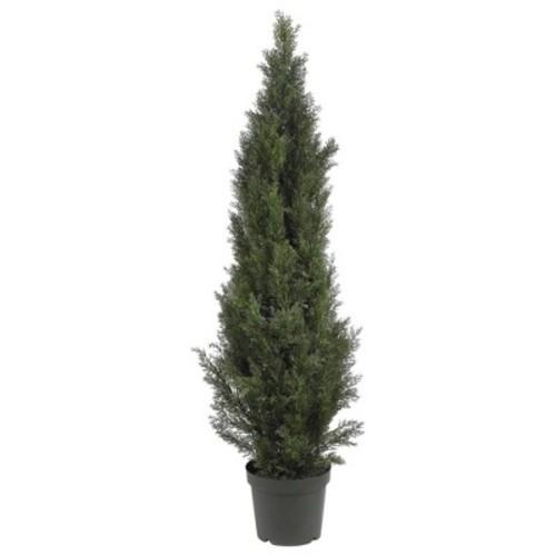 5' Mini Cedar Pine Tree (Indoor/Outdoor)