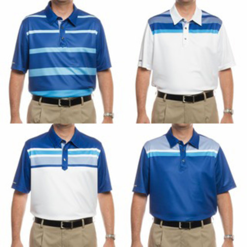 Ashworth Men's PGA Championship Collection Golf Polo Shirts (Assorted 4 Pack) [option : S]