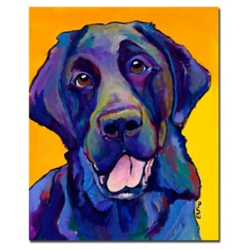 Trademark Fine Art Pat Saunders-White 'Buddy' Canvas Art 26x32 Inches