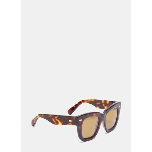 Library Metal Turtle Sunglasses in Brown