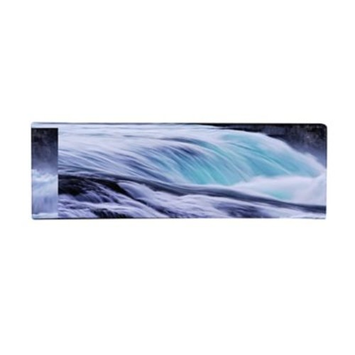 Trademark Fine Art Philippe Sainte-Laudy 'Furio' Canvas Art