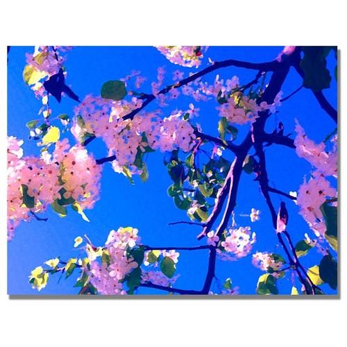 Amy Vangsgard Pink Flowering Canvas Art