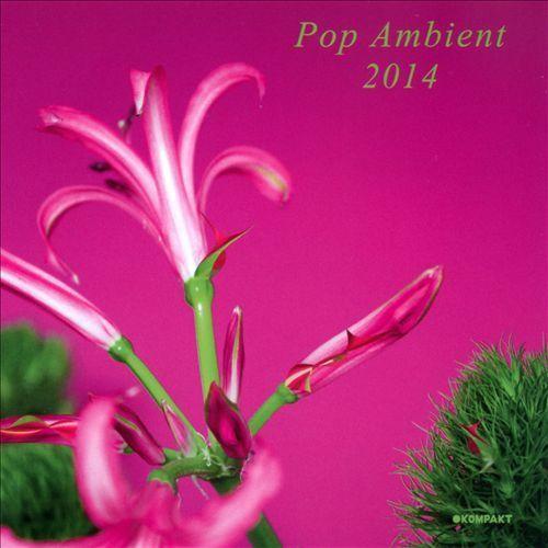 Pop Ambient 2014 [CD]