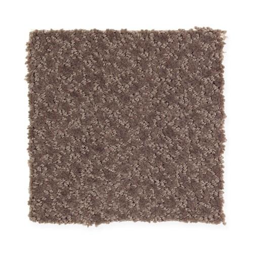 Home Decorators Collection Retreat - Color Trail Blazer Pattern 12 ft. Carpet