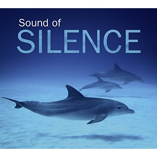 SOUND OF SILENCE - SOUND OF SILENCE