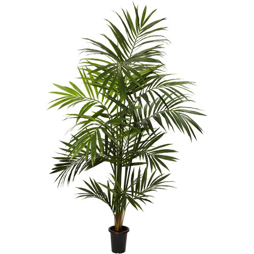 Nearly Natural - 5335 - 7 ft Kentia Palm Silk Tree