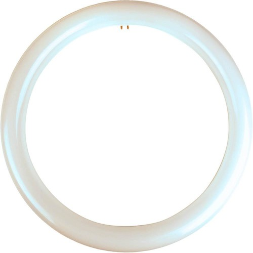 Meridian 32-Watt Equivalent Cool White T9 Circline Non-Dimmable LED Light Bulb