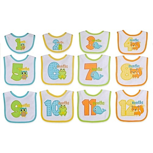 Neat Solutions 12-Piece Monthly Milestone Bib Set in Neutral