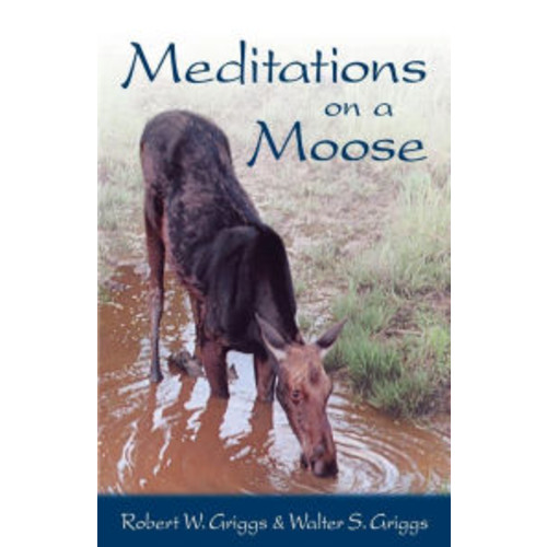 Meditations on a Moose