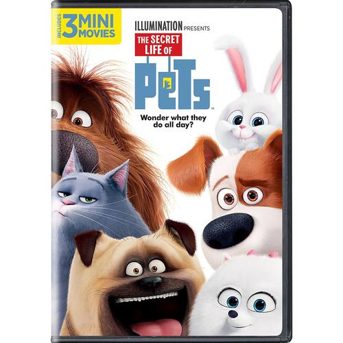 The Secret Life of Pets (DVD )