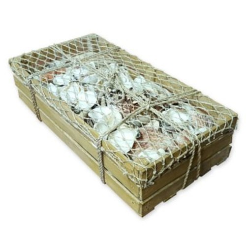 9 lb. Assorted Seashell Crate with Fish Net