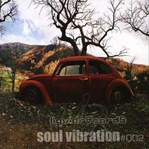 Soul Vibration, Vol. 2 [CD]