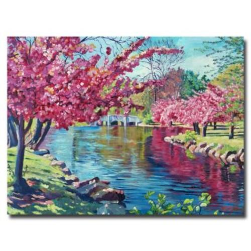 Trademark Fine Art 'Spring Soliloquy' 24