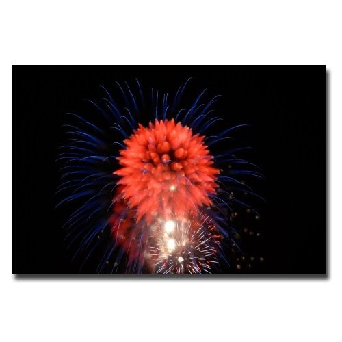 Abstract Fireworks II by Kurt Shaffer, 16x24-Inch Canvas Wall Art [16 by 24-Inch]
