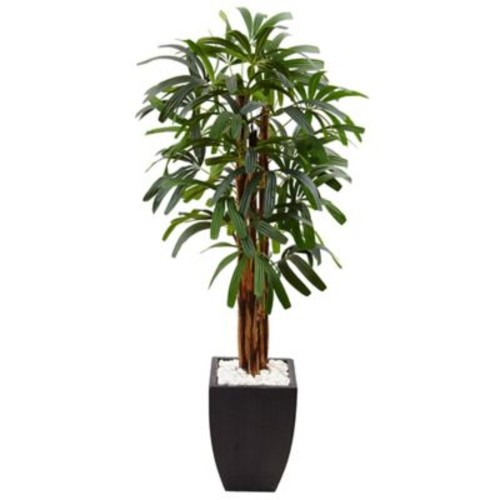 Nearly Natural 5.5-Foot Raphis Palm Tree with Black Planter