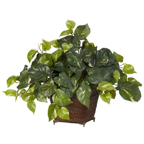 17 in. H Green Pothos with Coiled Rope Planter Silk Plant