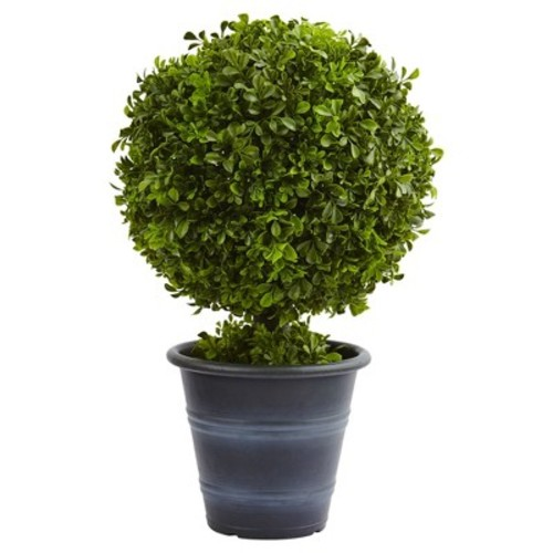 Boxwood Ball Topiary in Planter (23