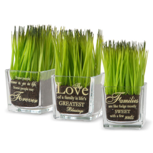 National Tree Company 'Live Laugh Love' Printed Glass Pots with Artificial Grass (Set of 3)