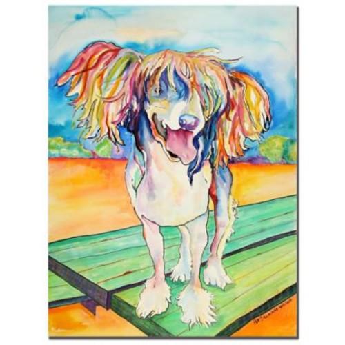 Trademark Fine Art Pat Saunders-White 'Mango Salsa' Canvas Art