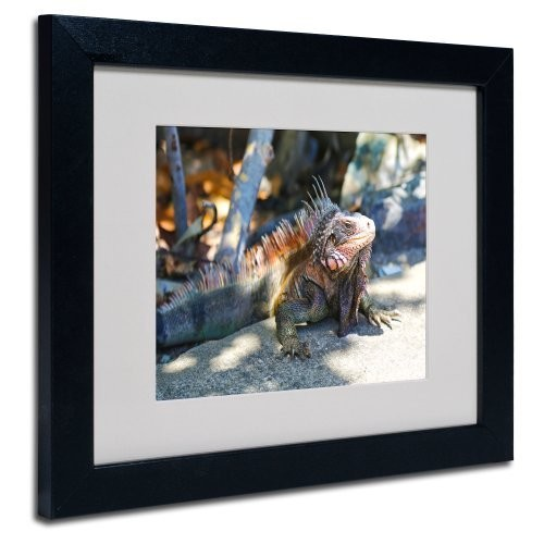 Virgin Islands 6 Canvas Wall Art by CATeyes, Black Frame, 11 by 14-Inch [11 by 14-Inch]