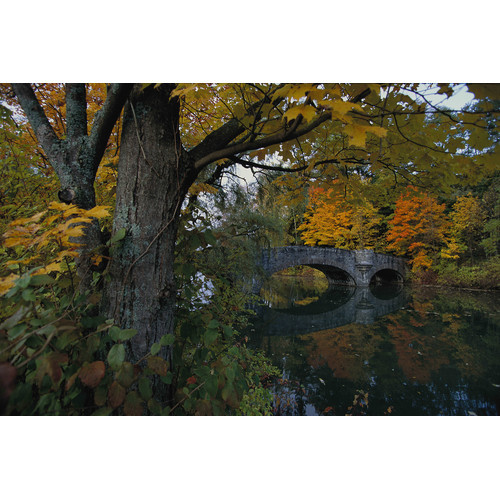 Brewster Home Fashions National Geographic Fall Foliage with Bridge Over Water Wall Mural