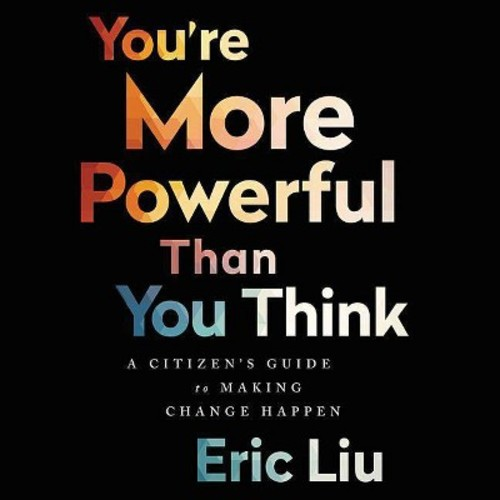 You're More Powerful Than You Think : A Citizens Guide to Making Change Happen (Unabridged)