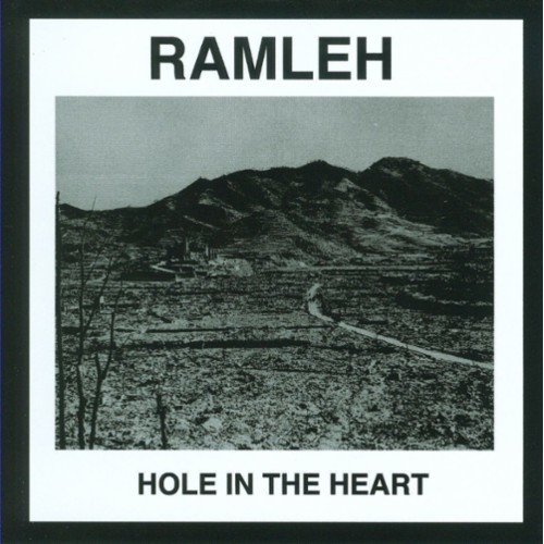 Hole In the Heart [CD]