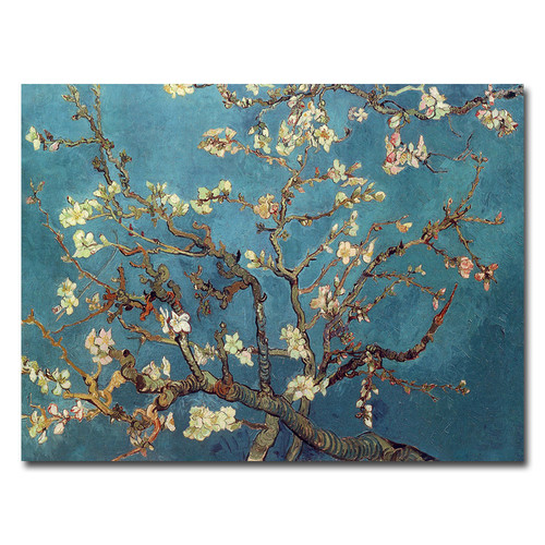 Trademark Global Vincent van Gogh 'Almond Blossoms' Canvas Art [Overall Dimensions : 14x19]