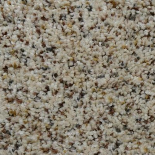 Home Decorators Collection Beach Club II - Color Liberty Texture 12 ft. Carpet
