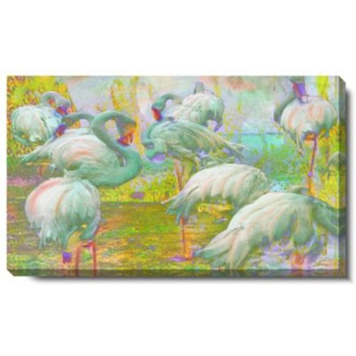 Studio Works Modern ''White Flamingos'' by Zhee Singer Graphic Art on Wrapped Canvas