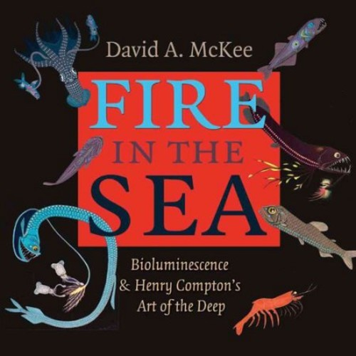 Fire in the Sea : Bioluminescence and Henry Compton's Art of the Deep