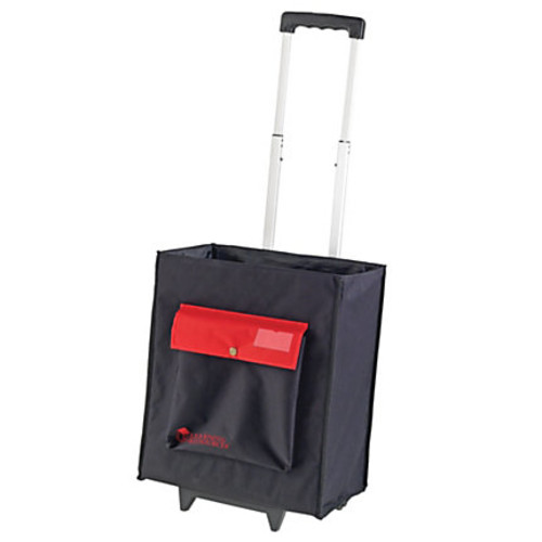 * A+ CARRY ALL ORGANIZATIONAL CADDY - LER1953 : Office Products : Office Products