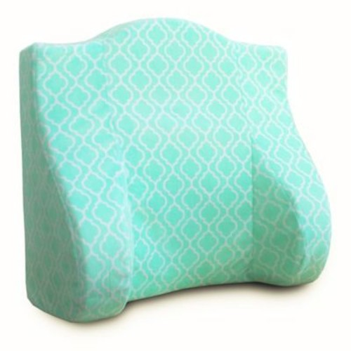 Back Buddy All-in-One Support Pillow