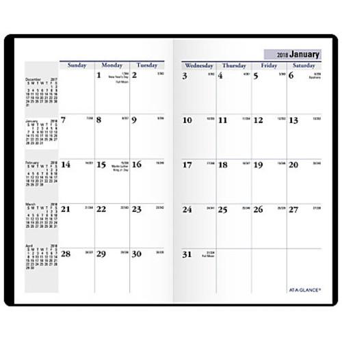 AT-A-GLANCE DayMinder 14-Month Pocket Planner, 3 5/8