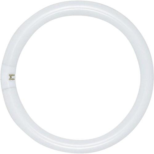 Satco T9 Circline 4-Pin Fluorescent Tube Light Bulb - S6503